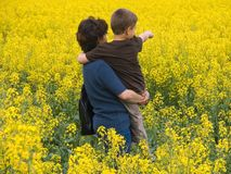 Family in yellow meadow. Mother and her son with yellow flowers Royalty Free Stock Image