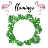 Flamingo, tropical leaves lettering illustration vector illustration