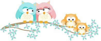 Família bonito da coruja no ramo de árvore da mola Fotos de Stock Royalty Free