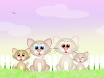 Família de gatos Fotos de Stock Royalty Free