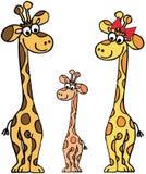 Família dos Giraffes Fotografia de Stock Royalty Free