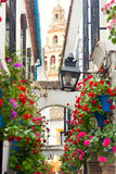 Famos Street Flowers decorated, Cordoba, Spain, Mediterranean Eu Royalty Free Stock Photos