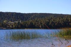 Abant Lake Royalty Free Stock Photos