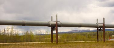 An engineering feat in the alaskan permafrost. The famous alaska pipeline as seen from the dalton highway Royalty Free Stock Photography