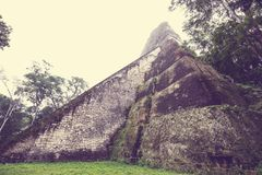 Tikal. Famous ancient Mayan temples in Tikal National Park, Guatemala, Central America Royalty Free Stock Image