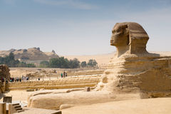 Famous ancient statue of Sphinx in Giza Royalty Free Stock Images
