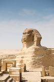 Famous ancient statue of Sphinx Royalty Free Stock Images