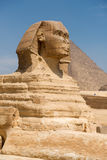 Famous ancient statue of Sphinx Royalty Free Stock Image