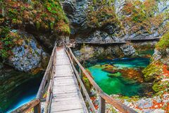 Free Famous And Beloved Vintgar Gorge Canyon With Wooden Path In Beautiful Autumn Colors Near Bled Lake Of Triglav National Park Royalty Free Stock Photo - 209682985