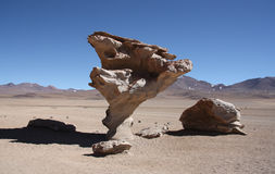 Famous Arbol de Piedra, Stone valley, Atacama Desert, Bolivia. Stone valley with famous Arbol de Piedra, a stone rock formation by wind erosion, in Atacama Royalty Free Stock Photo