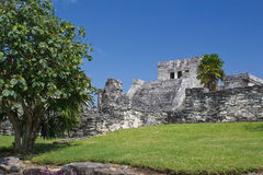 Famous archaeological ruins of Tulum in Mexico Royalty Free Stock Photos