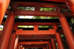 Japanese Arches in Kyoto, Japan stock images