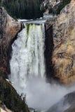 Yellowstone artist point waterfall royalty free stock photo