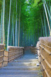 Famous bamboo grove at  Nenbutsu-ji Stock Photo