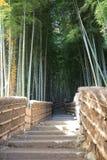 Famous bamboo grove at  Nenbutsu-ji Stock Photography