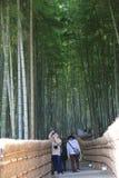 Famous bamboo grove at  Nenbutsu-ji Stock Image