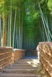 Famous bamboo grove at  Nenbutsu-ji Stock Images