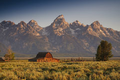 Famous barn on Mormon row Stock Image