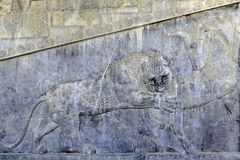 Famous bas relief carving of a lion hunting a bull in Persepolis World Heritage Site Stock Photography
