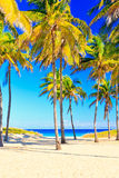 The famous beach of Varadero in Cuba Royalty Free Stock Photography