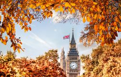 Big Ben clock against autumn leaves in London, England, UK Stock Photos