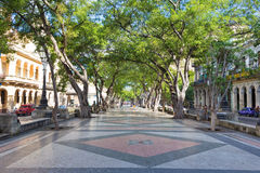 The famous boulevard of El Prado in Havana Royalty Free Stock Image