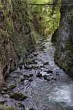 Famous canyon of Galbena in Transylvania, Romania royalty free stock image