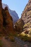 Famous canyon Masca at Tenerife island - Canary royalty free stock image