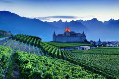 Famous castle Chateau d`Aigle in canton Vaud, Switzerland. Castle in Aigle is overlooking surrounding vineyards and the Alps. royalty free stock photography