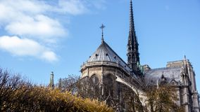 Back of the Cathedral of Notre Dame. The famous Cathedral of Notre Dame in Paris, France showing behind some trees Royalty Free Stock Photography