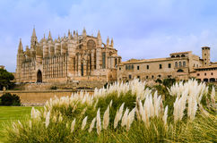 Cathedral of Palma de Mallorca Royalty Free Stock Photo