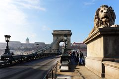 The famous Chain Bridge across the Danube river. The Buda Castle is in background, Budapest, Hungary, Europe. Stock Image