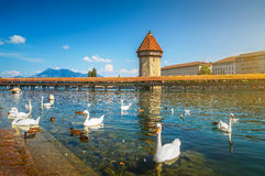Famous Chapel Bridge in the historic city of Lucerne, Switzerland Royalty Free Stock Photography