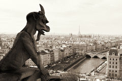 Notre Dame,Paris. Royalty Free Stock Photos