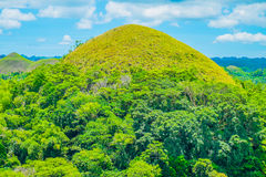 Famous Chocolate Hills natural landmark Royalty Free Stock Photography