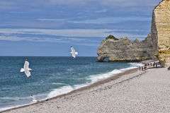 "Famous cliffs ""d'Amont"" of Etretat Royalty Free Stock Image"