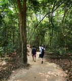 Famous Cu Chi tunnels. Vietnam Royalty Free Stock Photos