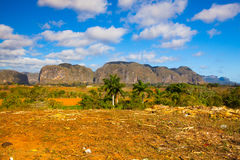 Famous Cuba farmland tobacco area. Valley de Vinales, Pinar del Rio, Cuba Royalty Free Stock Photography
