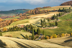 Famous cypress road in Monticchiello small town in the Val d`Orcia near Pienza in the countryside stock images