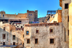 In the famous district of the tanners in the Kingdom City in Fes in Morocco Stock Images