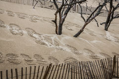 The Famous dune of Pyla fences, the highest sand dune in Europe Royalty Free Stock Photo