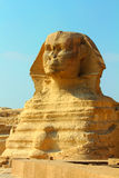 Famous egypt sphinx in Giza Royalty Free Stock Photos