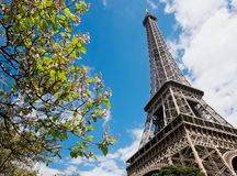 Famous Eiffel Tower in Paris Stock Images