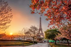 Eiffel Tower during spring time in Paris, France Stock Photos