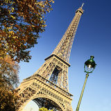Famous Eiffel Tower and trees in Paris Stock Image