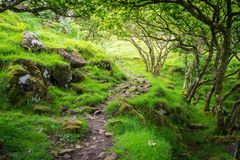 The famous Fairy Glen, located in the hills above the village of Uig on the Isle of Skye in Scotland. Idyllic small glen located in the hills above the village Royalty Free Stock Images