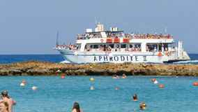 Famous Fig Tree bay beach stock video