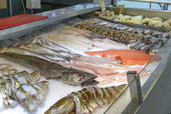 Famous Fish Market in Bergen Stock Images
