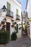 Famous Flowers street of Cordoba, Spain Stock Images