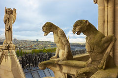 Famous gargoyles and angel of Notre Dame Stock Image